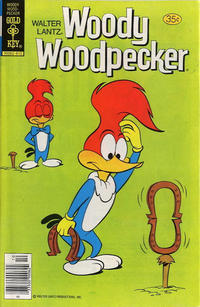 Cover Thumbnail for Walter Lantz Woody Woodpecker (Western, 1962 series) #171 [Gold Key]