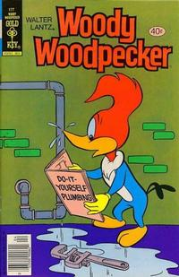 Cover Thumbnail for Walter Lantz Woody Woodpecker (Western, 1962 series) #177 [Gold Key]