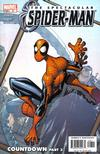 Cover for Spectacular Spider-Man (Marvel, 2003 series) #8