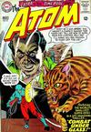 Cover for The Atom (DC, 1962 series) #21