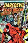 Cover for Daredevil (Marvel, 1964 series) #104 [Regular Edition]