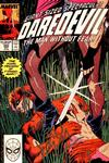 Cover for Daredevil (Marvel, 1964 series) #260 [Direct]