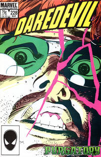 Cover for Daredevil (Marvel, 1964 series) #228 [Direct Edition]