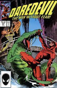 Cover Thumbnail for Daredevil (Marvel, 1964 series) #247 [Direct]