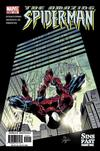 Cover Thumbnail for The Amazing Spider-Man (1999 series) #514 [Direct Edition]