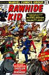 Cover for The Rawhide Kid (Marvel, 1960 series) #132