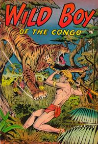 Cover Thumbnail for Wild Boy of the Congo (St. John, 1953 series) #11