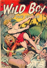 Cover Thumbnail for Wild Boy of the Congo (St. John, 1953 series) #12