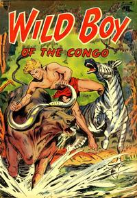 Cover Thumbnail for Wild Boy of the Congo (St. John, 1953 series) #13