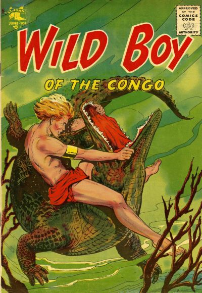 Cover for Wild Boy of the Congo (St. John, 1953 series) #15
