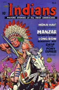 Cover Thumbnail for Indians (Fiction House, 1950 series) #1