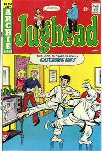 Cover Thumbnail for Jughead (Archie, 1965 series) #230