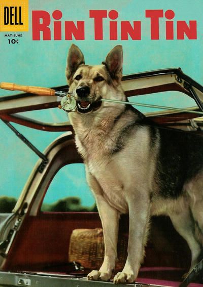 Cover for Rin Tin Tin (Dell, 1954 series) #13