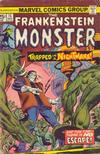 Cover for Frankenstein (Marvel, 1973 series) #15 [Regular Edition]