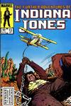 Cover Thumbnail for The Further Adventures of Indiana Jones (1983 series) #13 [Direct]