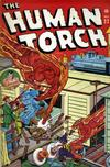 Cover for The Human Torch (Marvel, 1940 series) #22