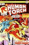 Cover for The Human Torch (Marvel, 1974 series) #6