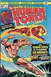 Cover for The Human Torch (Marvel, 1974 series) #7