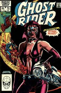 Cover Thumbnail for Ghost Rider (Marvel, 1973 series) #75 [Direct]