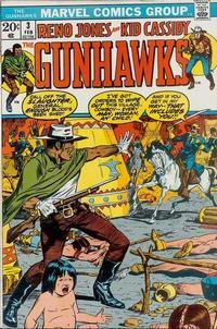 Cover Thumbnail for The Gunhawks (Marvel, 1972 series) #3