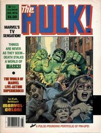 Cover Thumbnail for Hulk (Marvel, 1978 series) #16