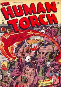 Cover Thumbnail for The Human Torch (Marvel, 1940 series) #15