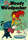 Cover for Walter Lantz Woody Woodpecker (Dell, 1952 series) #16