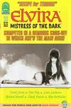 Cover for Elvira, Mistress of the Dark (Claypool Comics, 1993 series) #93