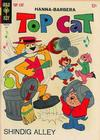 Cover for Top Cat (Western, 1962 series) #19