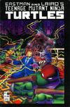Cover for Teenage Mutant Ninja Turtles (Mirage, 1984 series) #9