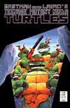 Cover for Teenage Mutant Ninja Turtles (Mirage, 1984 series) #16