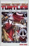 Cover for Teenage Mutant Ninja Turtles (Mirage, 1984 series) #21