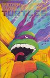 Cover for Teenage Mutant Ninja Turtles (Mirage, 1984 series) #22