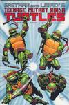 Cover for Teenage Mutant Ninja Turtles (Mirage, 1984 series) #25