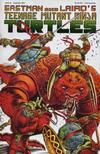 Cover for Teenage Mutant Ninja Turtles (Mirage, 1984 series) #43