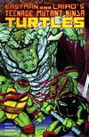 Cover for Teenage Mutant Ninja Turtles (Mirage, 1984 series) #45
