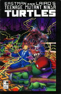 Cover Thumbnail for Teenage Mutant Ninja Turtles (Mirage, 1984 series) #9