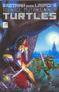 Cover Thumbnail for Teenage Mutant Ninja Turtles (Mirage, 1984 series) #13