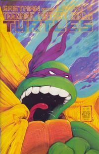 Cover for Teenage Mutant Ninja Turtles (Mirage, 1984 series) #22