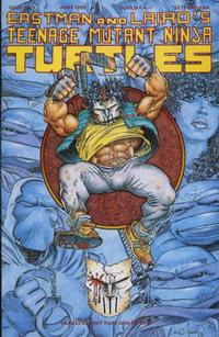 Cover Thumbnail for Teenage Mutant Ninja Turtles (Mirage, 1984 series) #48