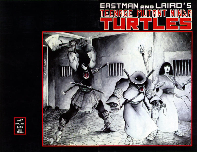 Cover for Teenage Mutant Ninja Turtles (Mirage, 1984 series) #17