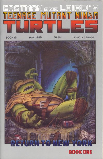 Cover for Teenage Mutant Ninja Turtles (Mirage, 1984 series) #19