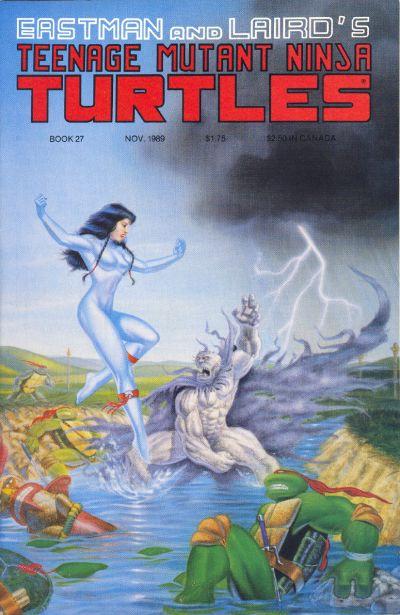 Cover for Teenage Mutant Ninja Turtles (Mirage, 1984 series) #27