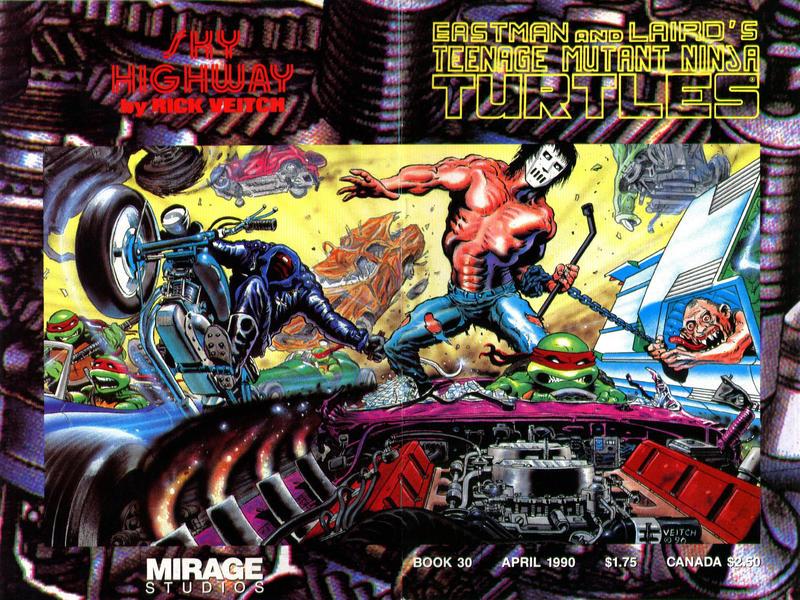 Cover for Teenage Mutant Ninja Turtles (Mirage, 1984 series) #30
