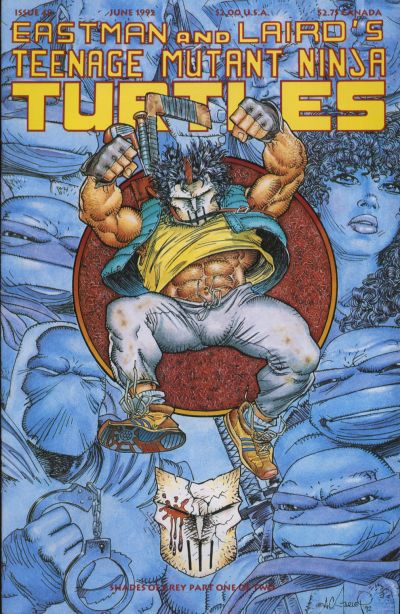 Cover for Teenage Mutant Ninja Turtles (Mirage, 1984 series) #48