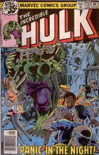 Cover Thumbnail for The Incredible Hulk (Marvel, 1968 series) #231