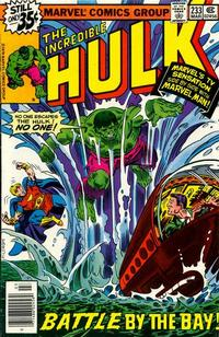 Cover Thumbnail for The Incredible Hulk (Marvel, 1968 series) #233