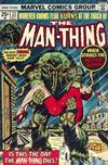 Cover for Man-Thing (Marvel, 1974 series) #22 [Regular Edition]