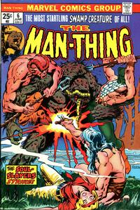 Cover Thumbnail for Man-Thing (Marvel, 1974 series) #6