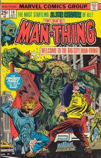 Cover Thumbnail for Man-Thing (Marvel, 1974 series) #19